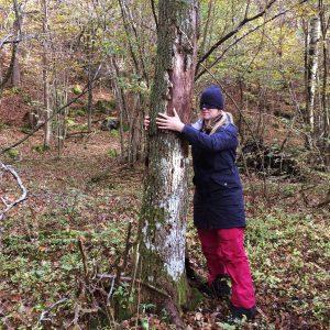 meet_tree2
